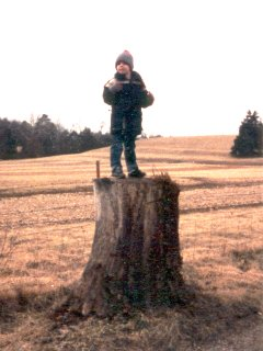 Here, I'm standing on a tree stump in a field near War Eagle Mill near Rogers.