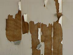 Peeling paint over wood paneling.