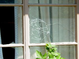 Also just like in the main lodge, broken glass was everywhere...