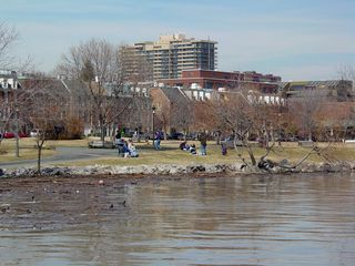 Further along the Potomac's banks, people can be found enjoying the absolutely wonderful day...