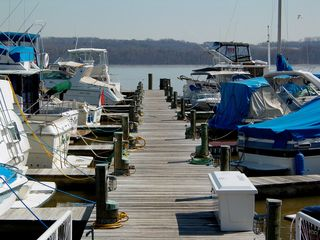 The Alexandria Waterfront is also home to quite a few private boats as well...