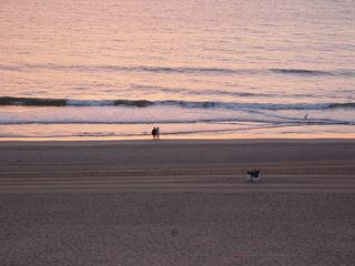 A couple standing at the water's edge looks like a tiny speck in between a big beach and an even bigger ocean.