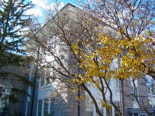 Behind Wilson Hall, next to Keezell Hall, this tree is still hanging on to a few yellow leaves, though most of its leaves have scattered to the four winds.