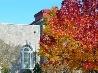 Behind Wilson Hall and Maury Hall, you definitely have a diversity of colors in the leaves!