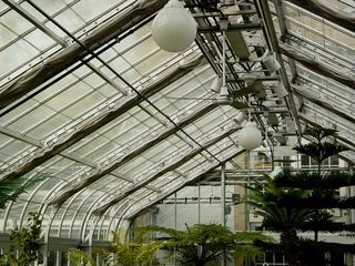 Even though it's easy to forget... this is a greenhouse!
