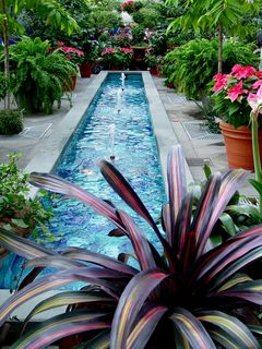 In the Garden Court, just behind the main lobby, the centerpieces are two long fountains...