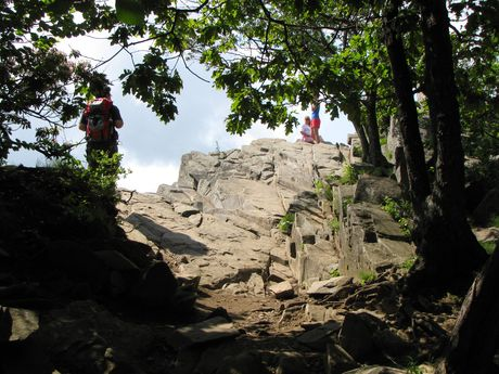 The first view of the Rocks, as hikers emerge from the woods
