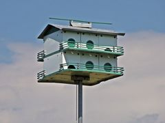Birdhouse at Lake Artemesia, 2014