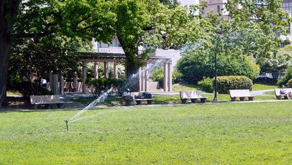 On this particular day, sprinklers were in place to water the grass.