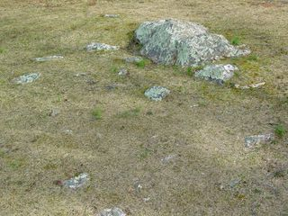 The ground has a number of rocks in it. Wonderful to look at, but nasty if you trip on them.