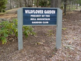 A large part of the park is a spacious wildflower garden, with paths, benches, and trees and plants galore.
