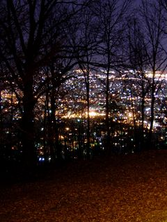 The city beyond the park glows brightly...