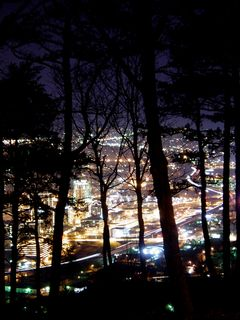 All along the way up to the star, the city is visible through the trees...
