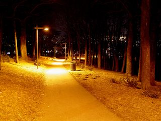 When seen at night, the foot path to the Roanoke Star is indeed a sight to behold...
