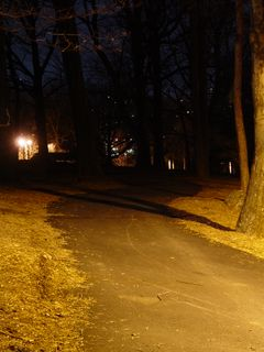 An asphalt path, presumably added later, provides a quick shortcut back to the lower parking area. However, this path is unlighted, making it less inviting as night sets in.
