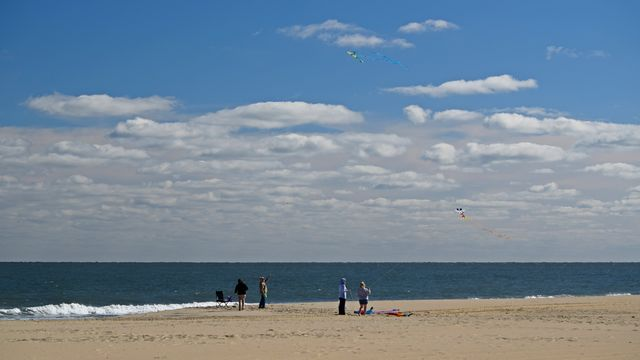 A group flies kites.