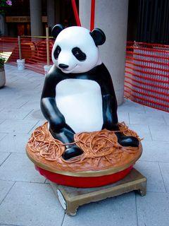 Kung Pao Panda by Barbara and William Gordon