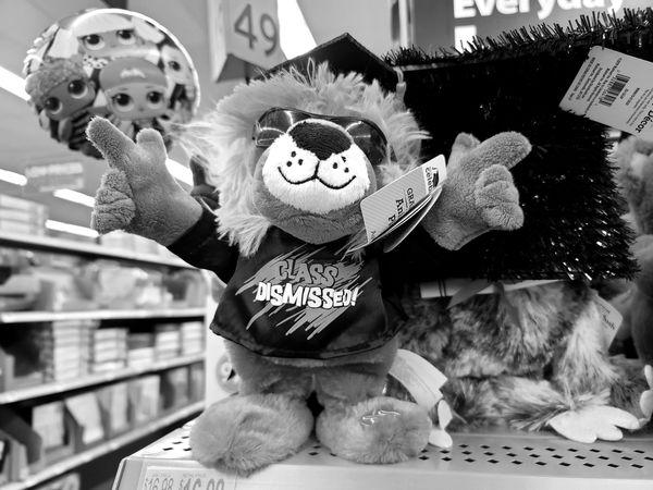 Stuffed animal celebrating the graduation of the class of 2020.