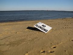 """""""NO PLUNGING"""" sign on East Beach, left over from the Maryland Polar Bear Plunge held two weeks earlier. No plunge activity occurs on East Beach. All plunge activity occurs on South Beach."""