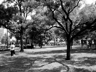 The park at the center of Dupont Circle is a place where people go to meet, relax, and play.