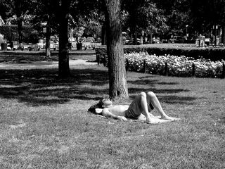 On this hot day in early August, a man takes a moment to sunbathe.