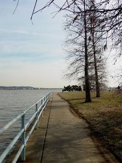 As you can see, East Potomac Park is a peaceful place. There's water on both sides, and trees above.