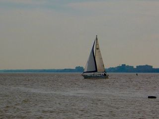 Additionally, all kinds of watercraft, sailboats in this case, grace us with their presence.
