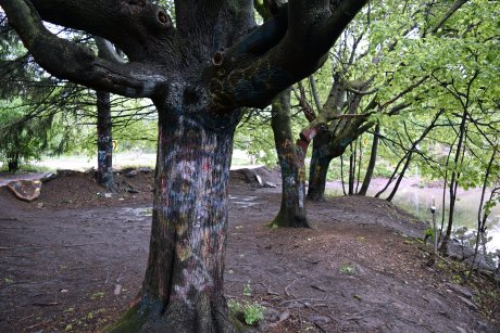 Graffiti-covered trees by the entrance to St. Ignatius Cemetery, near the north end of the Graffiti Highway in Centralia, Pennsylvania.